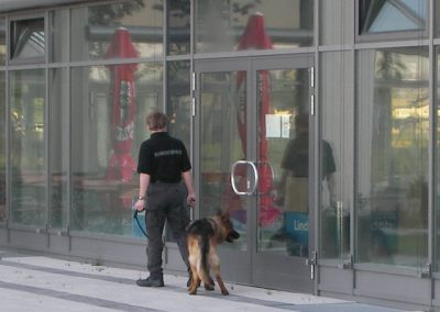 Hundestaffel2
