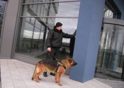 Hundestaffel6